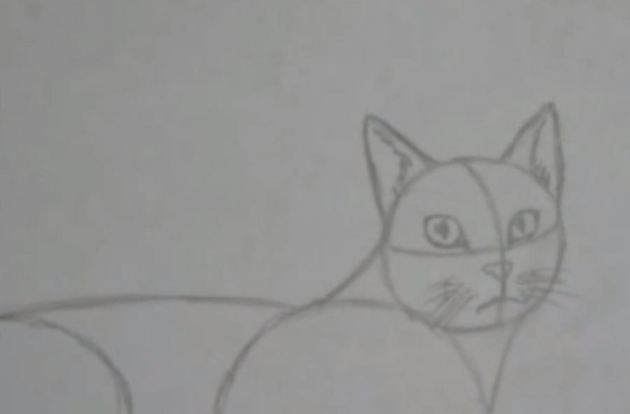Как шаг за шагом нарисовать кота в полный рост - фото 3