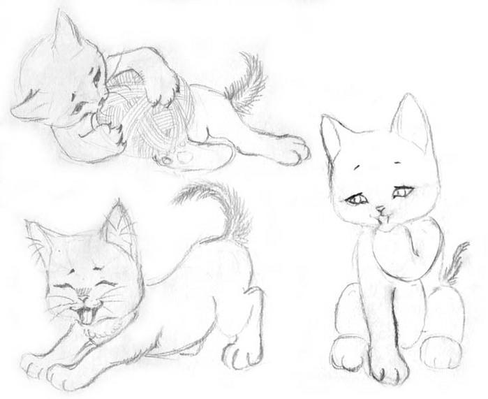 Рисуем котенка - шаг 10