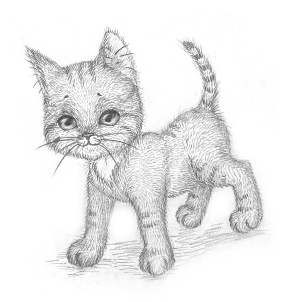 Рисуем котенка - шаг 9