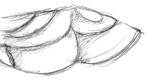 Разукрашиваем фламинго карандашами или ручкой - шаг 1