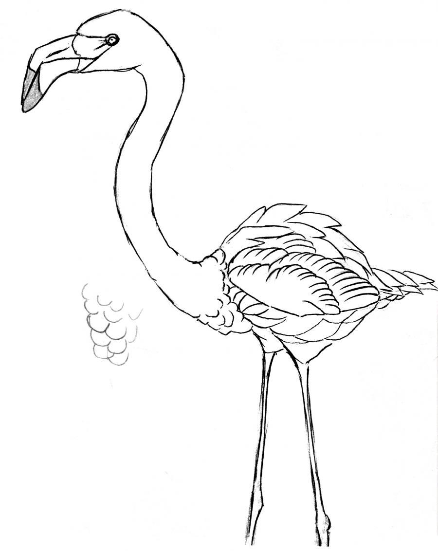 Разукрашиваем фламинго детальный фото урок - шаг 4