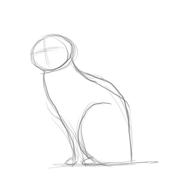 Как нарисовать кошку другие части