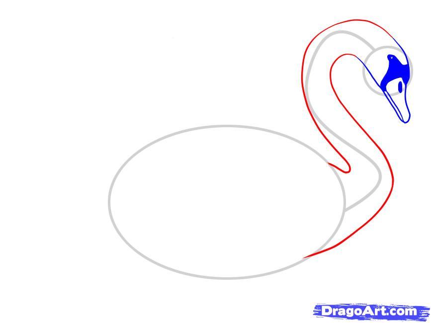 Учимся рисовать лебедя - шаг 5