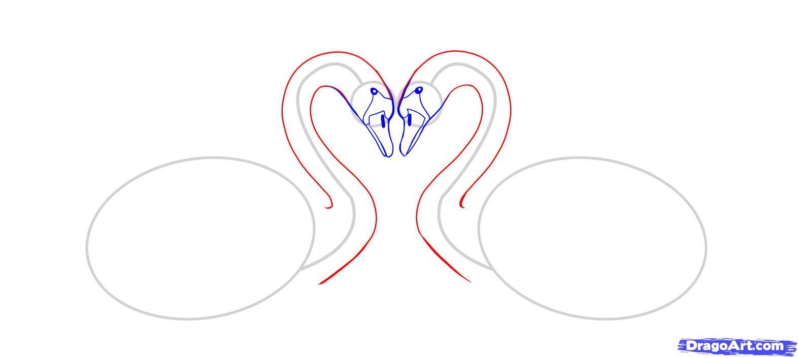 Рисуем двух лебедей - шаг 4