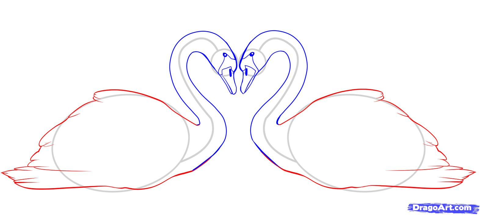 Рисуем двух лебедей - шаг 5