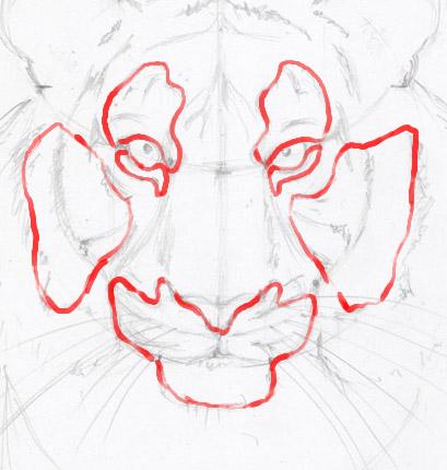 Рисуем морду тигра - шаг 12