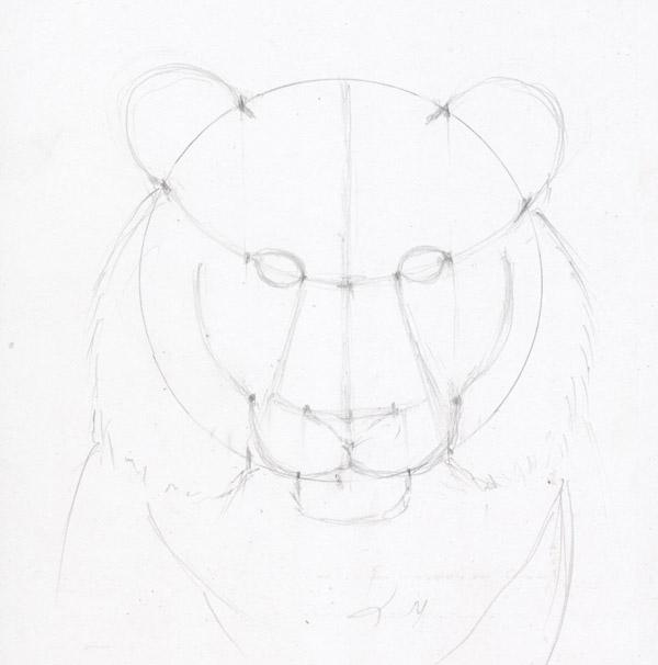 Рисуем морду тигра - шаг 7