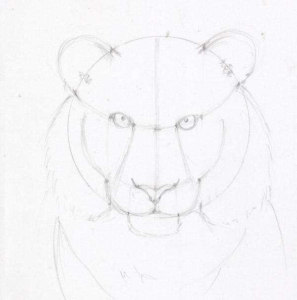 Рисуем морду тигра - шаг 8