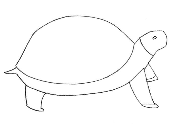 Как просто нарисовать черепаху - шаг 2
