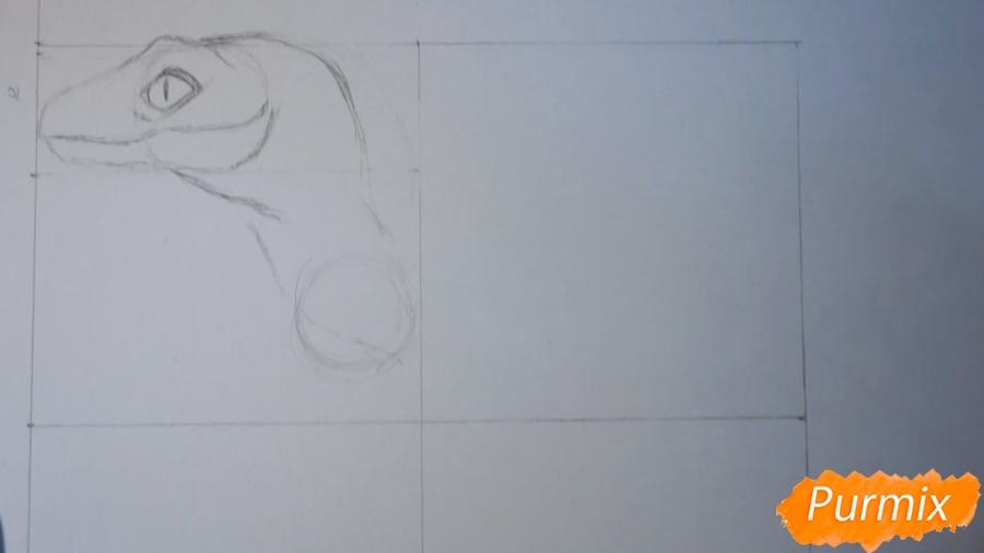 Учимся рисовать Велоцираптор - шаг 3