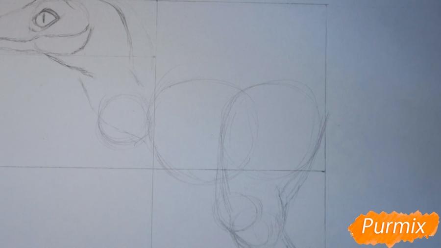 Учимся рисовать Велоцираптор - шаг 4
