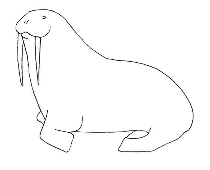 Рисуем моржа - шаг 2