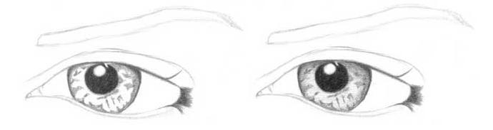 Учимся рисовать глаза человека - шаг 2