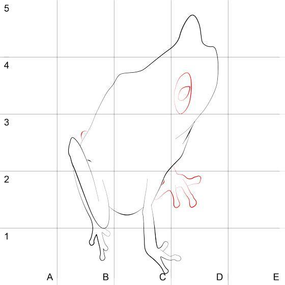 Как нарисовать лягушку в 3d на бумаге
