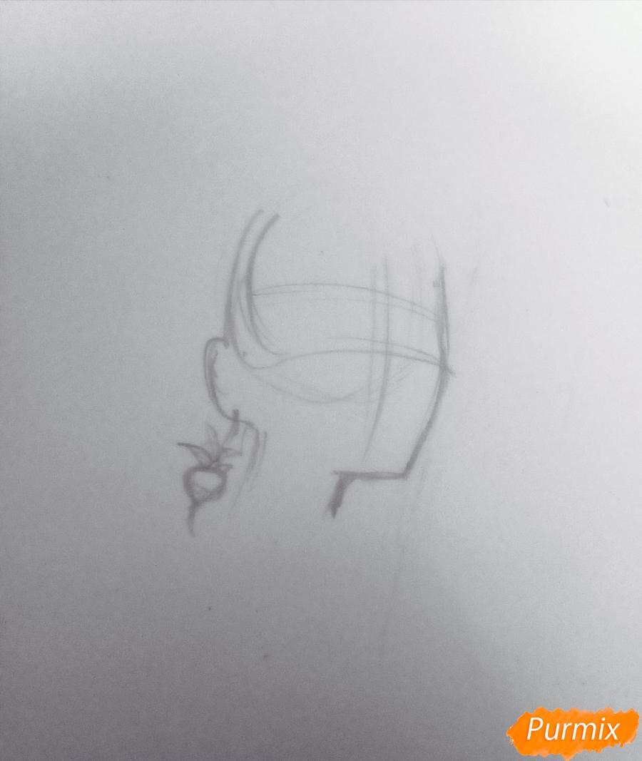 Рисуем Полумну Лавгуд из Гарри Поттера цветными карандашами - шаг 1