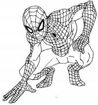 Человека -паука (Spider-Man) карандашом