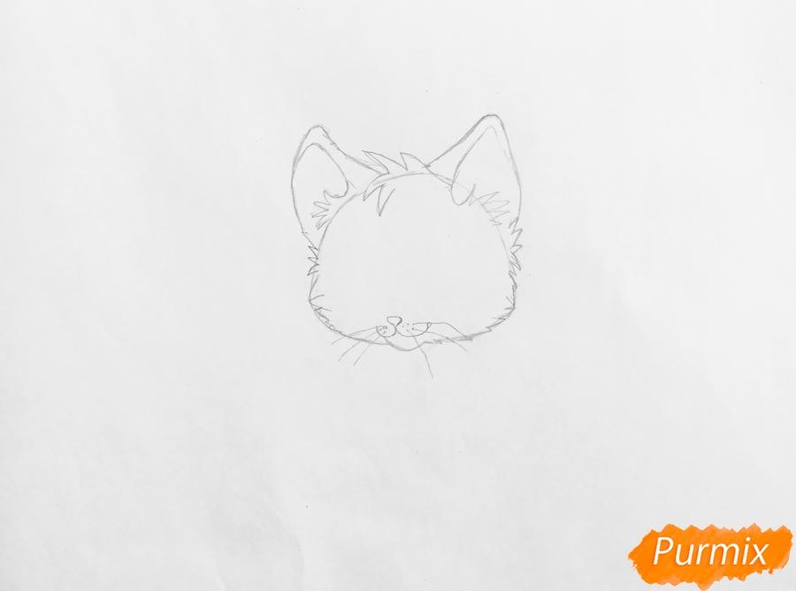 Рисуем аниме барсёнка с крыльями - шаг 2