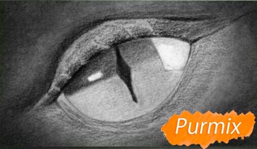 Рисуем глаз дракона - фото 4