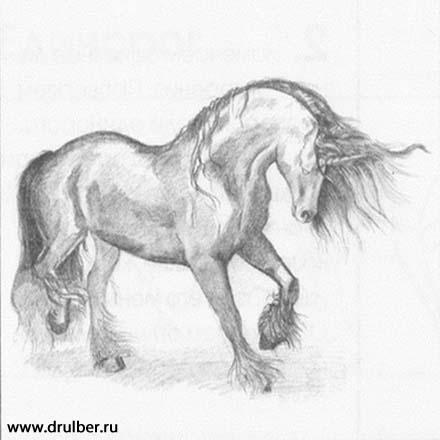 Рисуем реалистичного единорога - фото 5