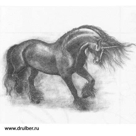 Рисуем реалистичного единорога - фото 9