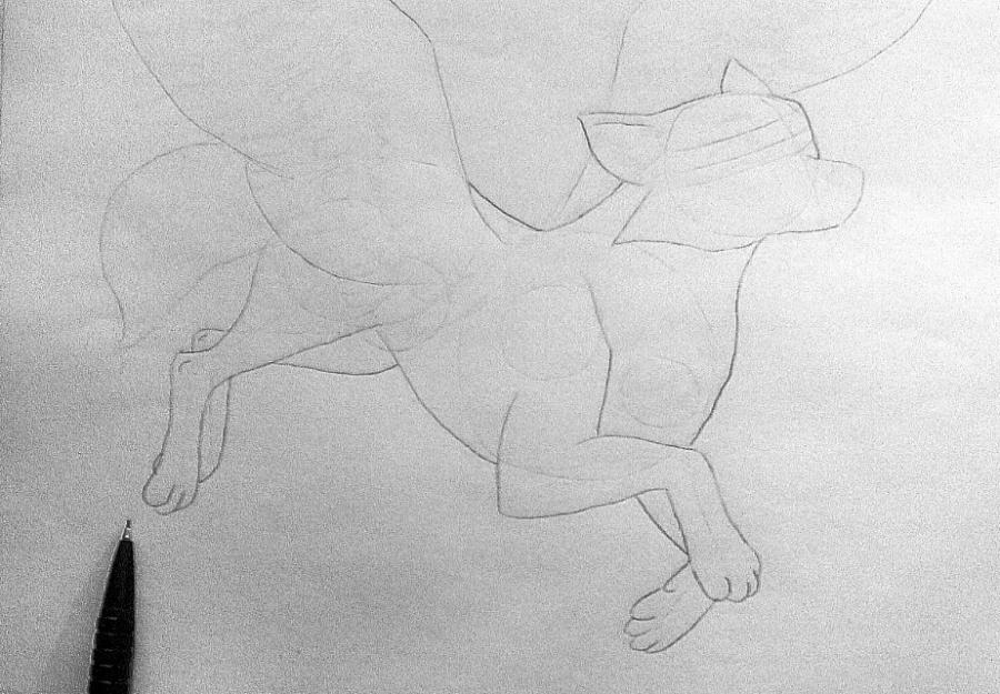 Рисуем фэнтези волчицу в полете карандашами - шаг 6
