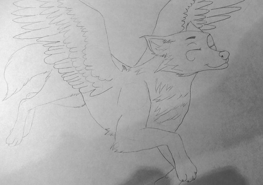 Рисуем фэнтези волчицу в полете карандашами - шаг 9