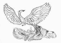 Жар-птицу на бумаге карандашом