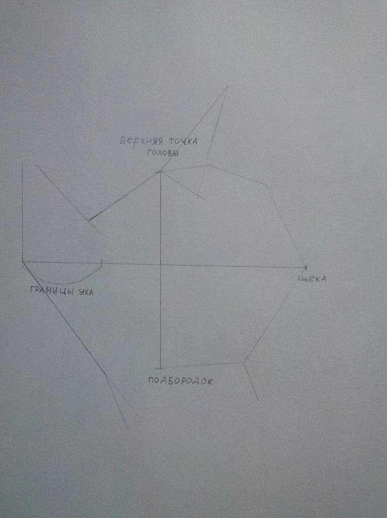 Рисуем портрет Рарити - шаг 2