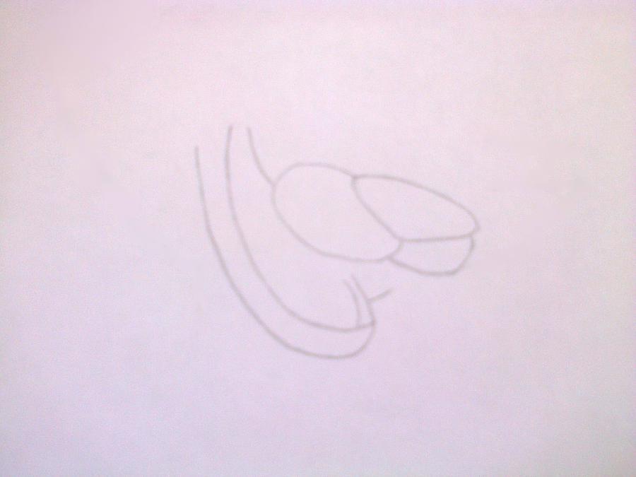 Рисуем голову Фокси из 5 ночей с Фредди - шаг 2