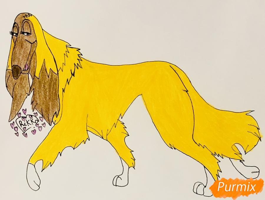 Рисуем афганскую борзую по имени Сильви из мультфильма Балто - фото 7