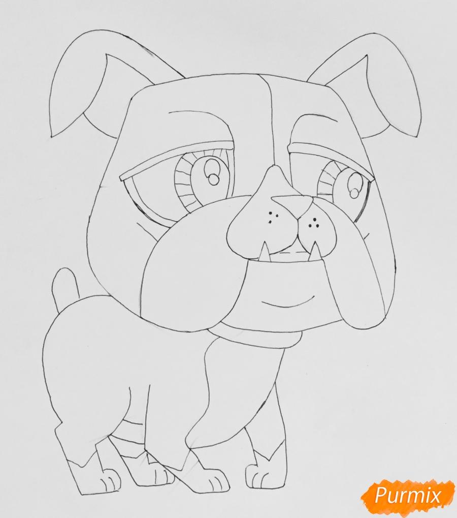 Рисуем пет шопа бульдога из мультфильма My Littlest Pet Shop - шаг 5