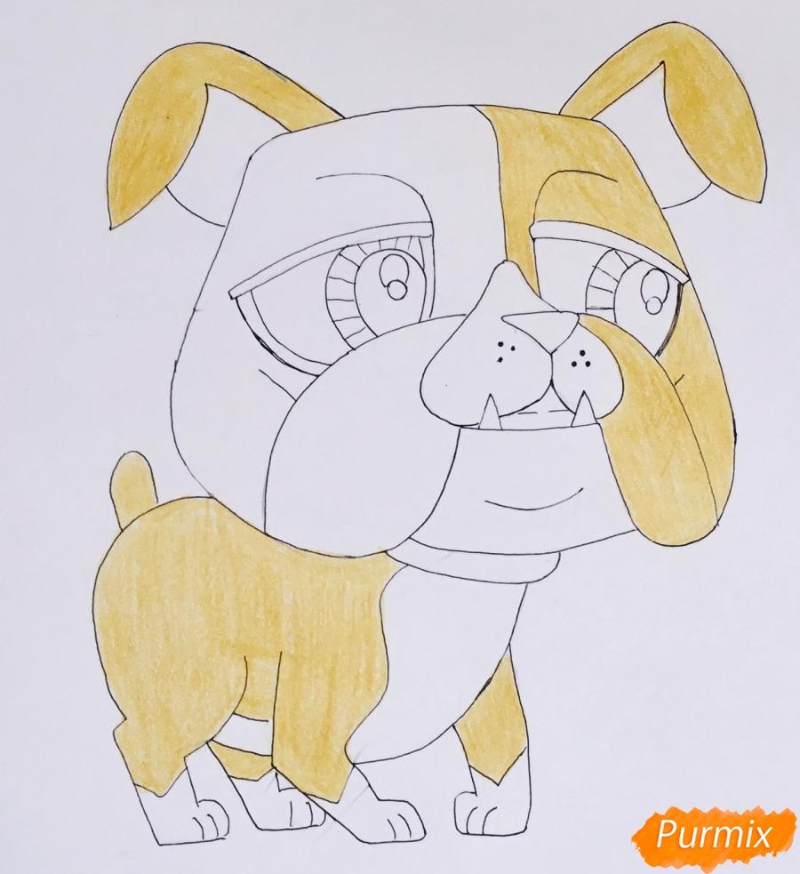 Рисуем пет шопа бульдога из мультфильма My Littlest Pet Shop - шаг 6