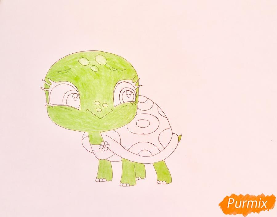 Рисуем черепашку Олиев из мультфильма My Littlest Pet Shop - шаг 6