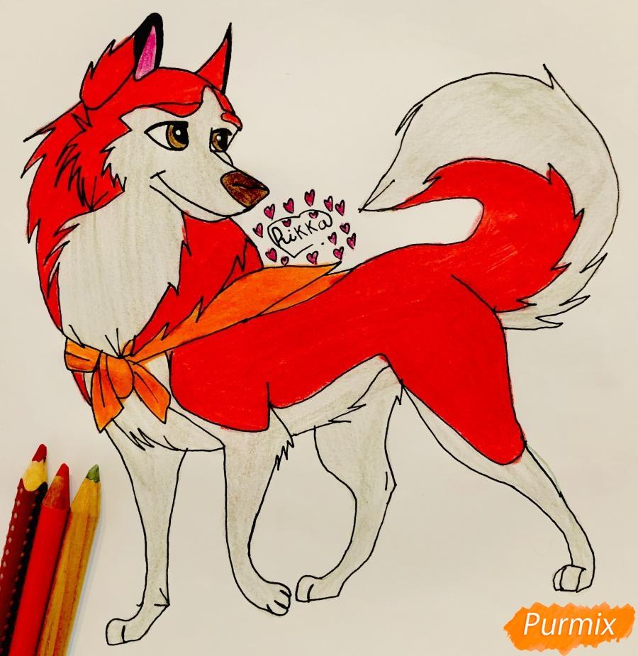 Как нарисовать хаски Дженну из мультфильма Балто карандашом поэтапно