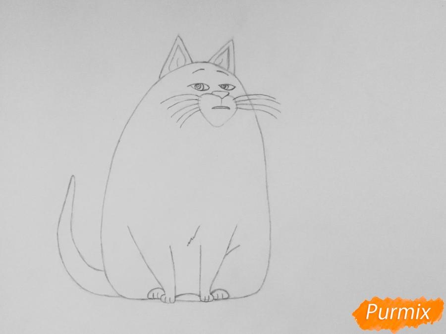 Рисуем кошку Хлою из мультфильма Тайная жизнь домашних животных - шаг 4