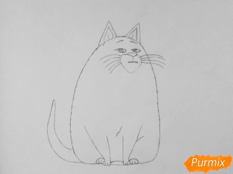 Рисуем кошку Хлою из мультфильма Тайная жизнь домашних животных - шаг 5