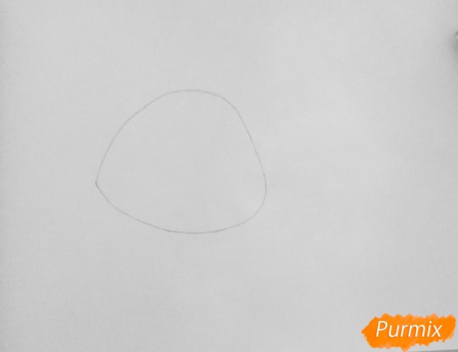 Рисуем кошку Шугар из мультфильма: My Littlest Pet Shop - шаг 1