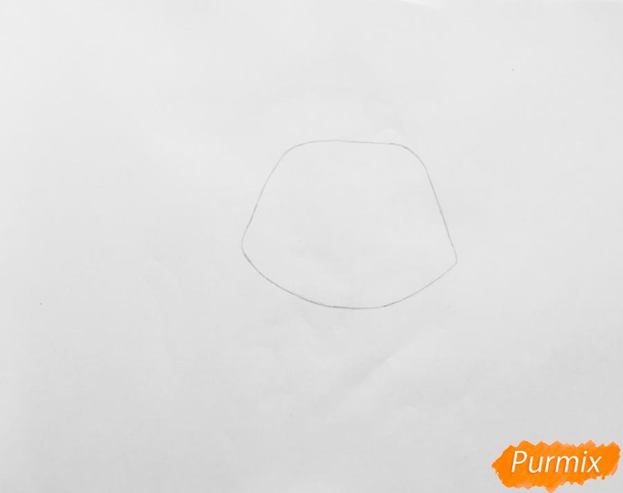 Рисуем кошку Страм Бассо из мультфильма My Littlest Pet Shop - шаг 1
