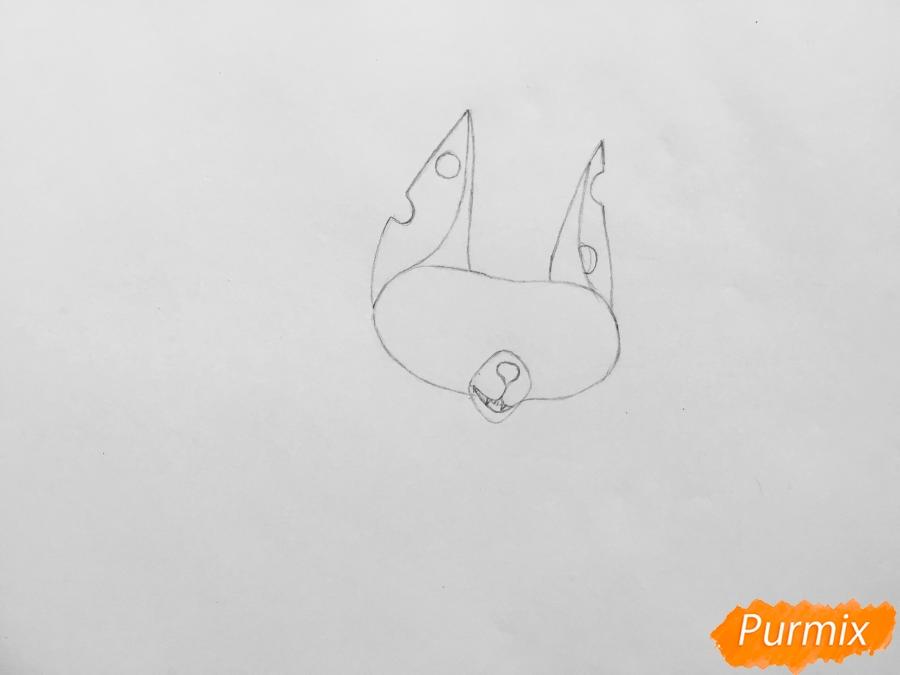 Рисуем кота Озона из мультфильма Тайная жизнь домашних животных - шаг 2
