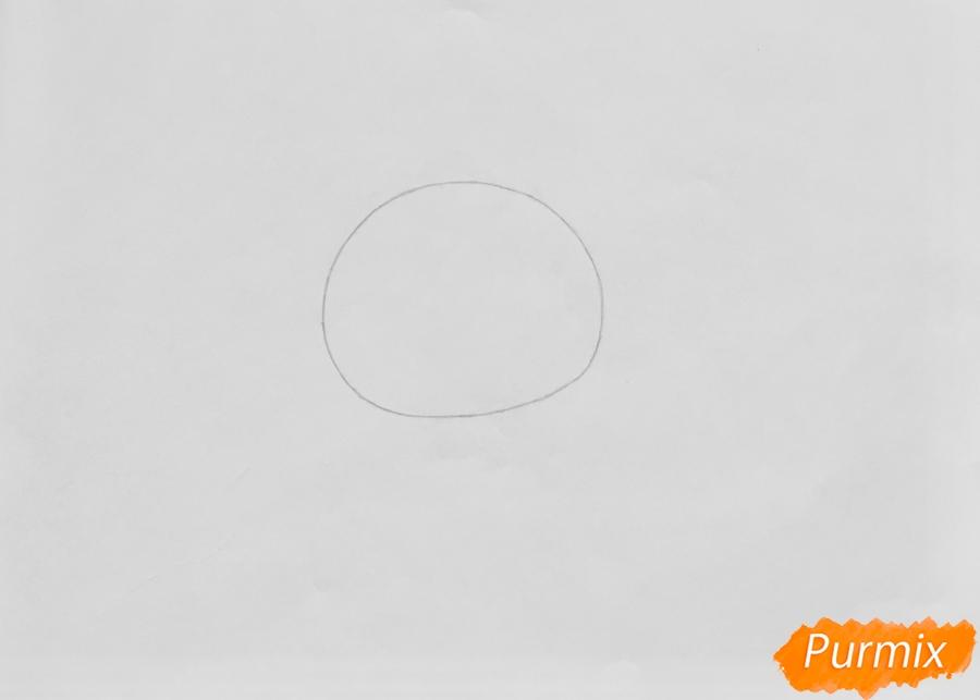 Рисуем кролика Баттеркрим из мультфильма My Littlest Pet Shop - шаг 1