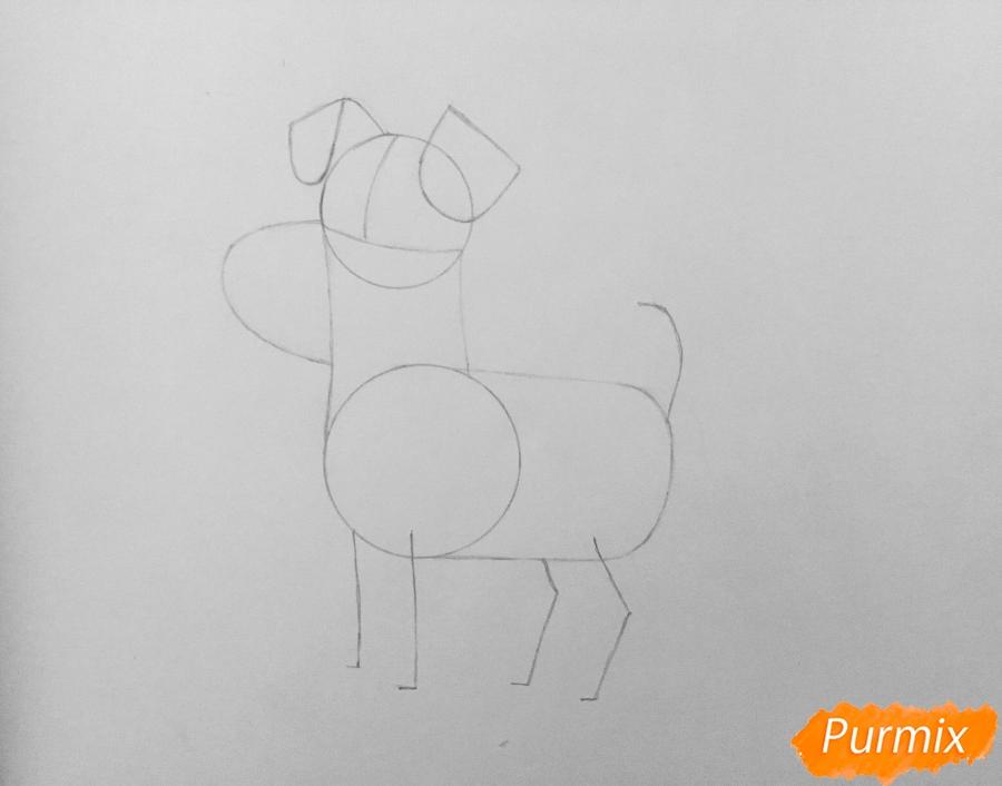 Рисуем собаку Макса из мультфильма Тайная жизнь домашних животных - шаг 4