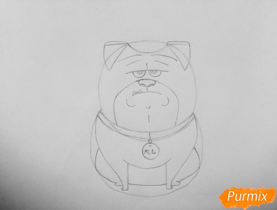 Рисуем Мела из мультфильма Тайная жизнь домашних животных - шаг 5