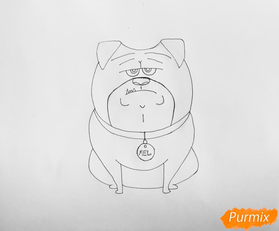 Рисуем Мела из мультфильма Тайная жизнь домашних животных - шаг 6