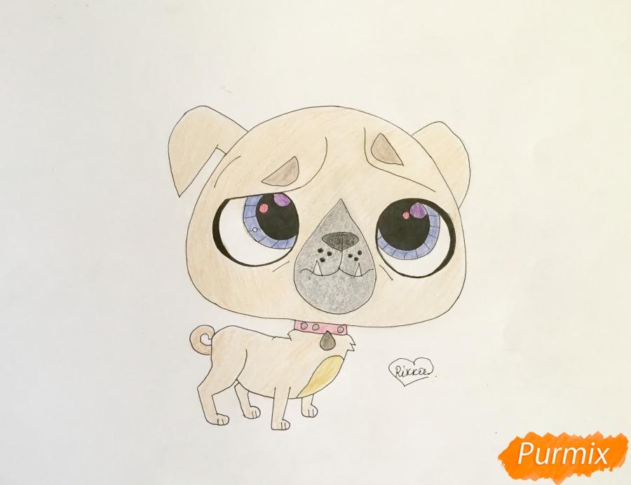 Как нарисовать мопса из мультфильма My Littlest Pet Shop карандашом поэтапно