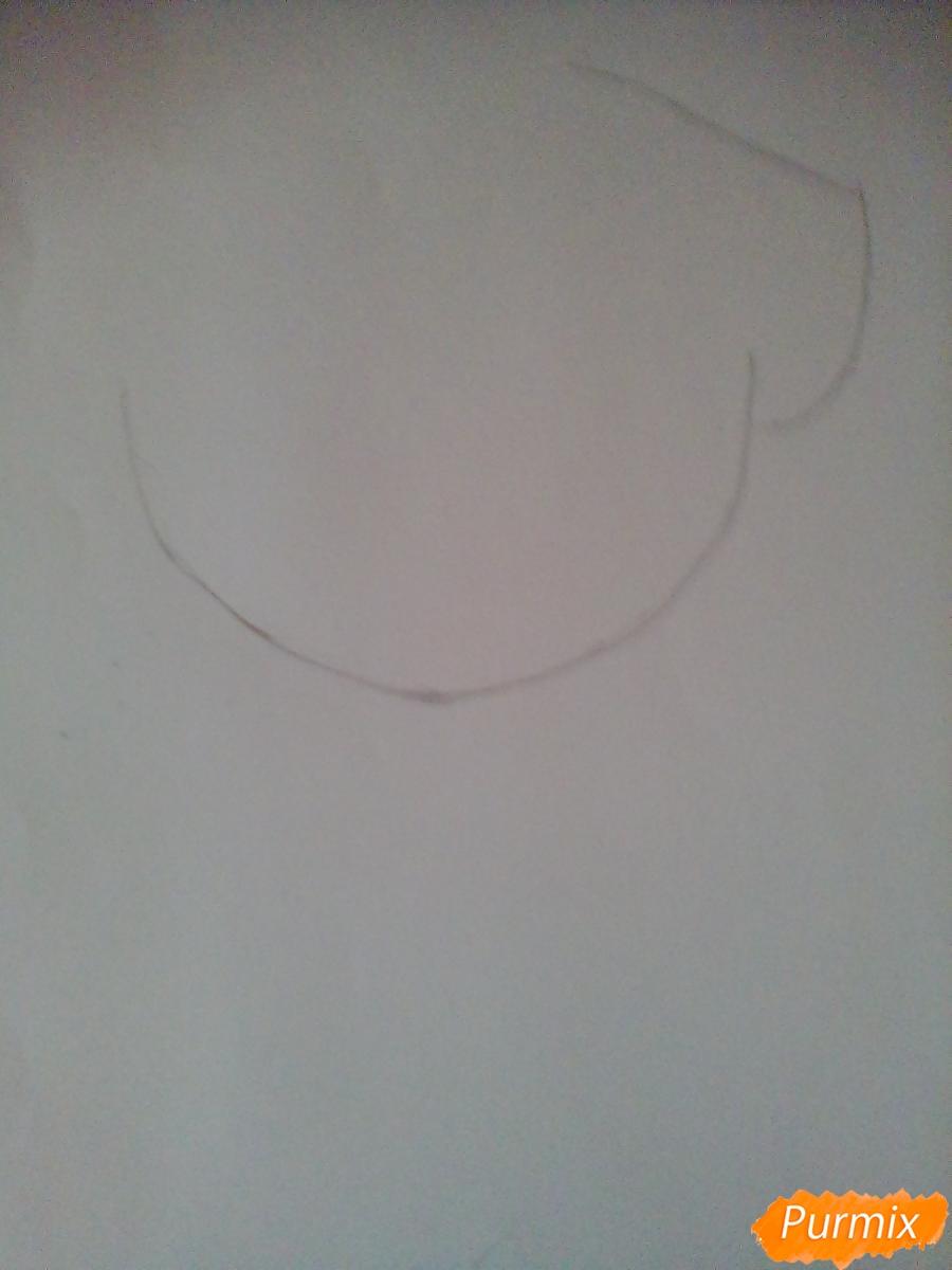 Рисуем пони Пинкамину Диану Пай в маске - шаг 1
