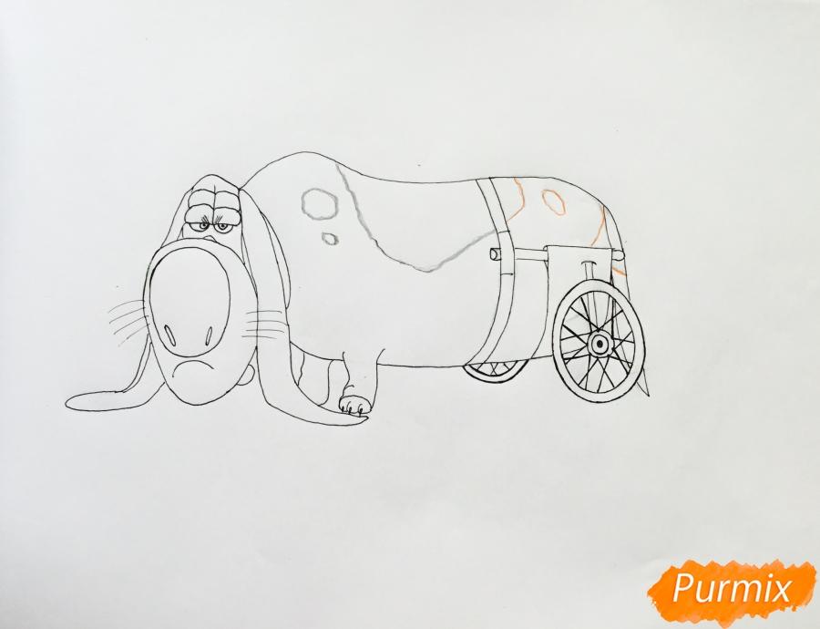 Рисуем бассет хаунда Попса из мультфильма Тайная жизнь домашних животных  . - шаг 7