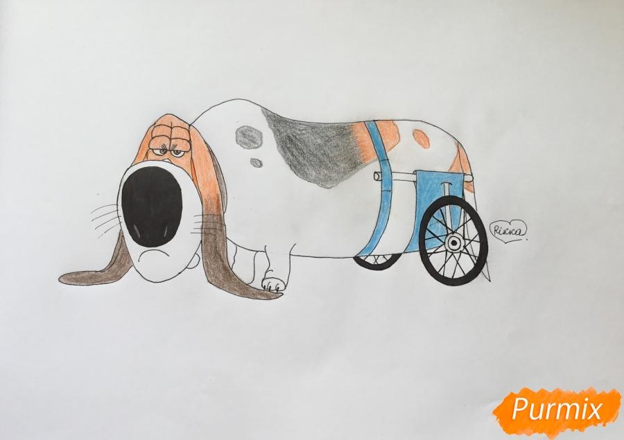 Как нарисовать бассет хаунда Попса из мультфильма Тайная жизнь домашних животных карандашом поэтапно.