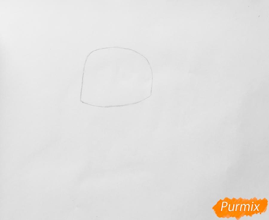 Рисуем птичку Кукси из мультфильма Тайная жизнь домашних животных  . - шаг 1