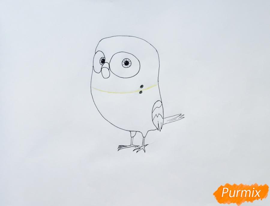 Рисуем птичку Кукси из мультфильма Тайная жизнь домашних животных  . - шаг 4