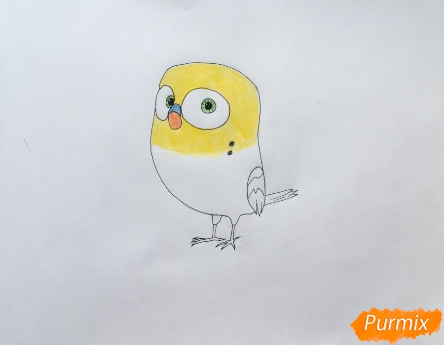Рисуем птичку Кукси из мультфильма Тайная жизнь домашних животных  . - шаг 5